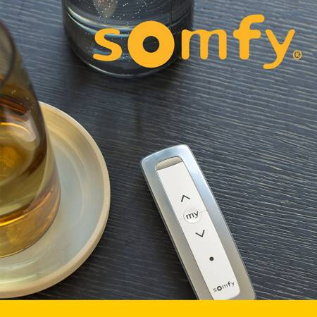 Somfy Situo 1 A/M io Pure II 1870722
